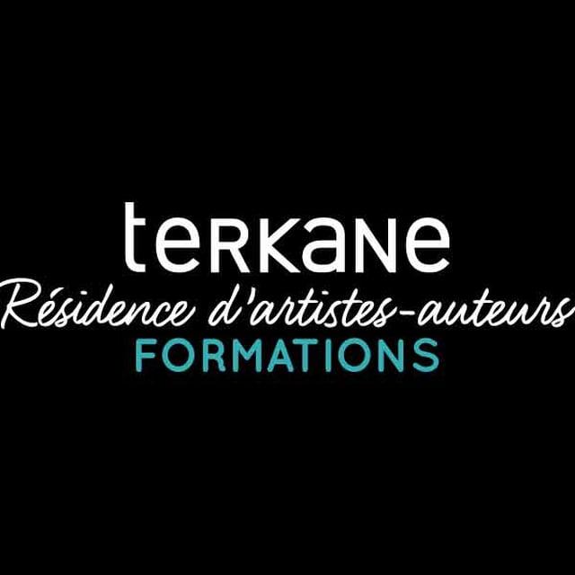 Terkane résidence d'artistes animer une communauté sur les réseaux sociaux, Zigzag marketing, Anne Marie Richier expert réseaux sociaux